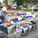 Tampa woman selling massive ornament collection